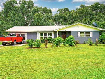 6067 SW WILCOX STREET, Arcadia, FL, 34266,