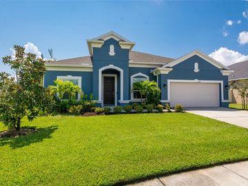 8316 SKY EAGLE DRIVE, Tampa, FL, 33635,