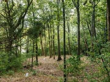1765 Woodsong Dr (Lot #37), Brentwood, TN, 37027,