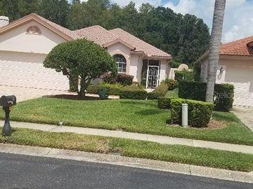 1281 DARTFORD DRIVE, Tarpon Springs, FL, 34688,