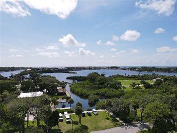 8218 PAPAYA, Port Richey, FL, 34668,