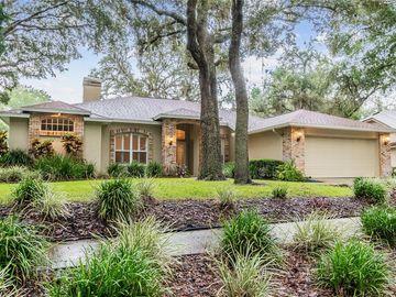 6247 GREENWICH DRIVE, Tampa, FL, 33647,