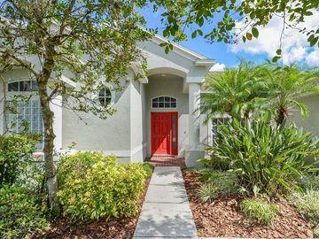 26805 SHOREGRASS DRIVE, Wesley Chapel, FL, 33544,