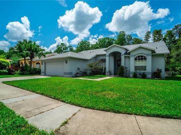 11948 BLAZE LANE, New Port Richey, FL, 34654,