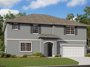 524 AVILA PLACE, Howey In The Hills, FL, 34737,