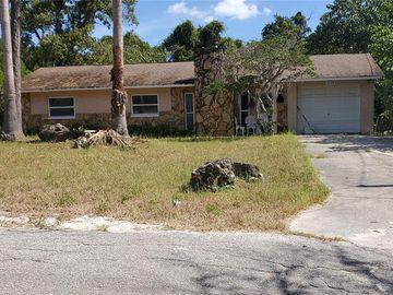 15128 OMAHA STREET, Hudson, FL, 34667,