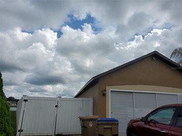 113 SAFFRON WAY, Kissimmee, FL, 34758,
