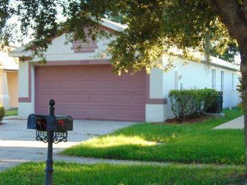 11312 COCOA BEACH DRIVE, Riverview, FL, 33569,