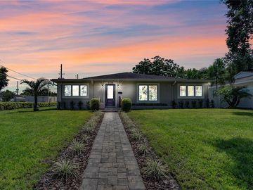 1119 N THORNTON AVENUE, Orlando, FL, 32803,