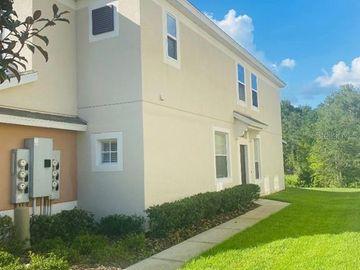 26527 CASTLEVIEW WAY, Wesley Chapel, FL, 33544,
