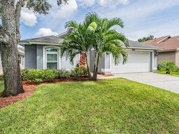 12327 GLENFIELD AVENUE, Tampa, FL, 33626,