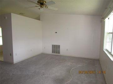 243 WILLOW BROOK DRIVE, Leesburg, FL, 34748,