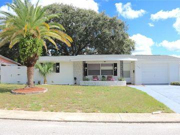 11640 ROCKS LANE, Port Richey, FL, 34668,