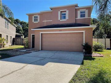 11821 MANGO CROSS COURT, Seffner, FL, 33584,