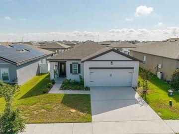 884 ORCHID GROVE BOULEVARD, Davenport, FL, 33837,