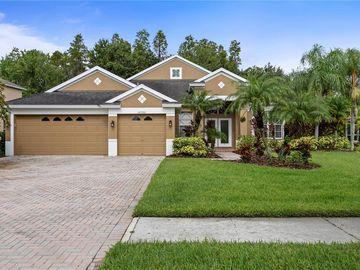 10700 CORY LAKE DRIVE, Tampa, FL, 33647,
