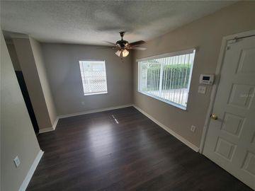 204 SWANNANOA STREET, Lakeland, FL, 33805,