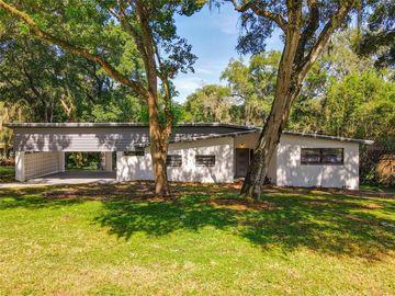 36131 E SPRING LAKE BOULEVARD, Fruitland Park, FL, 34731,