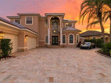 17804 SAINT LUCIA ISLE DRIVE, Tampa, FL, 33647,