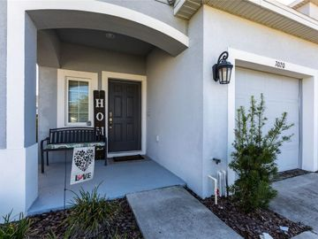 7020 SUMMER HOLLY PLACE, Riverview, FL, 33578,