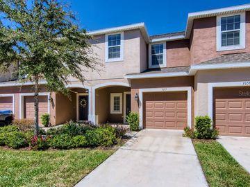 7057 TOWNE LAKE ROAD, Riverview, FL, 33578,