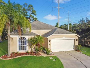 13051 GRAND BANK LANE, Orlando, FL, 32825,