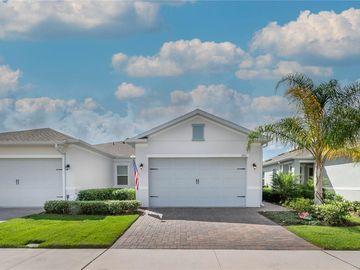1753 FLORA PASS PLACE, Kissimmee, FL, 34747,