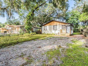 8306 N ELMER STREET, Tampa, FL, 33604,