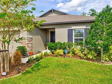 19092 MALINCHE LOOP, Spring Hill, FL, 34610,