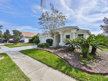 10501 EGRET HAVEN LANE, Riverview, FL, 33578,