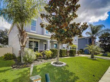15356 HERON HIDEAWAY CIRCLE, Winter Garden, FL, 34787,