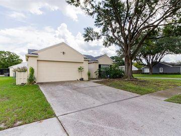 6084 MORNINGDALE AVENUE, Lakeland, FL, 33813,