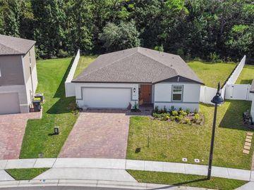 577 VISTA VILLAGES BOULEVARD, Davenport, FL, 33896,