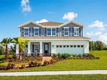 3357 GRASSY LAKE VIEW AVENUE, Minneola, FL, 34715,