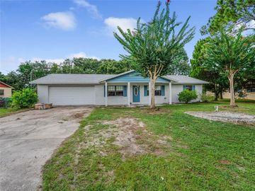 806 HICKORY AVENUE, Fruitland Park, FL, 34731,