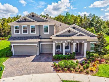 4080 NATURAL VISTA COURT, New Port Richey, FL, 34655,