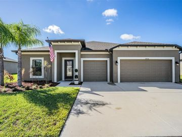 18730 CORTES CREEK BOULEVARD, Spring Hill, FL, 34610,