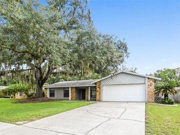 9709 WOODLAND RIDGE DRIVE, Temple Terrace, FL, 33637,