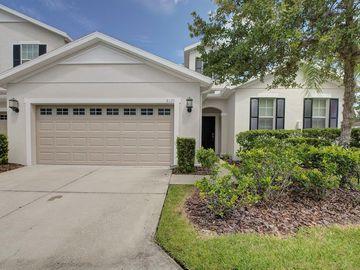 8120 HAMPTON VIEW LANE, Tampa, FL, 33647,