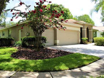 9317 HERITAGE OAK COURT, Tampa, FL, 33647,
