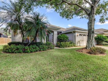 12305 WYCLIFF PLACE, Tampa, FL, 33626,