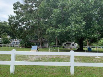 19105 CROOKED LANE, Lutz, FL, 33548,