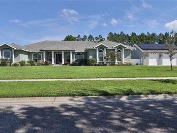 13208 JAUDON RANCH ROAD, Dover, FL, 33527,