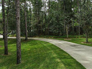 2094 COUNTY ROAD 243C, Wildwood, FL, 34785,