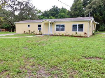 11413 THOMAS ROAD, Seffner, FL, 33584,