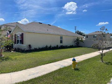 9930 WARM STONE STREET, Thonotosassa, FL, 33592,