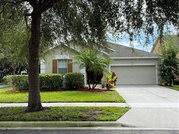 8711 MCCORMACK MCRAE WAY, Orlando, FL, 32836,