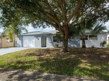 6333 ABERDEEN AVENUE, New Port Richey, FL, 34653,