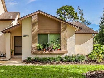 7594 ST ANDREWS BOULEVARD, Weeki Wachee, FL, 34613,
