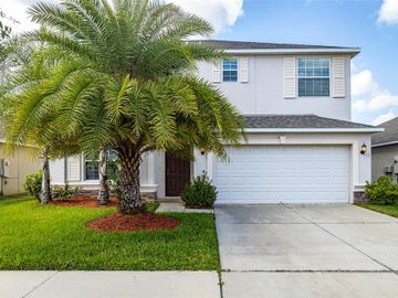 11619 MANSFIELD POINT DRIVE, Riverview, FL, 33569,